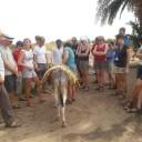 Wadi Rum climbing tour